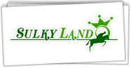 Sulkyland: virtual horse racing game